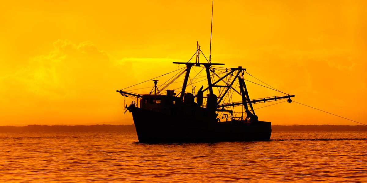 Mantenimiento Básico de tu Barco Pesquero