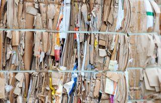 Proceso de Reciclaje del Papel