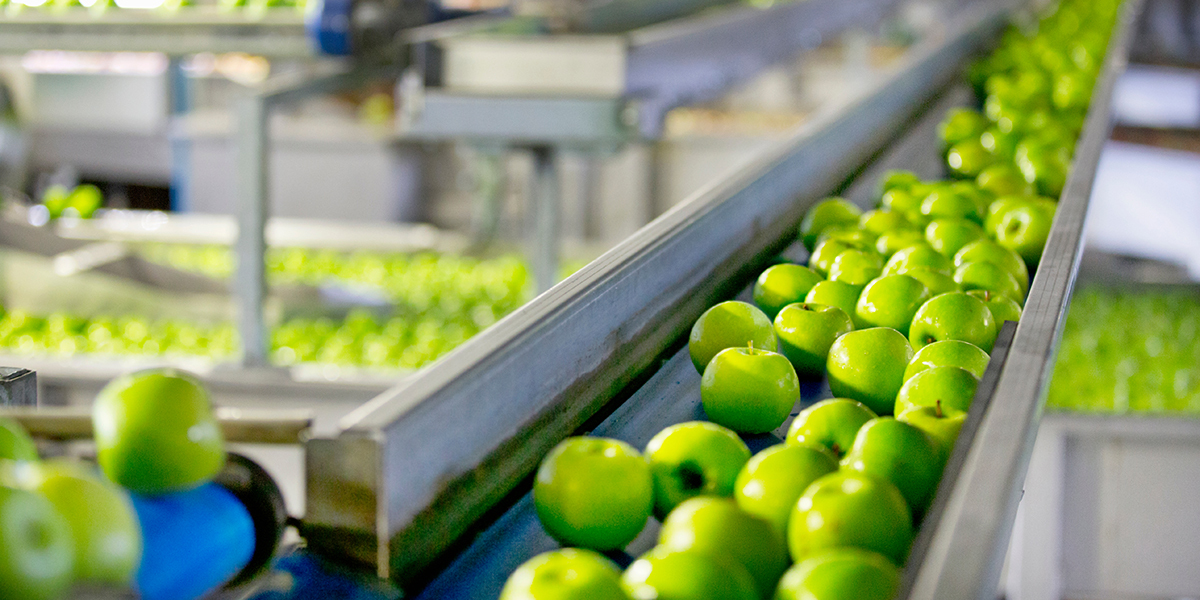 Los Lubricantes en la Industria Alimenticia